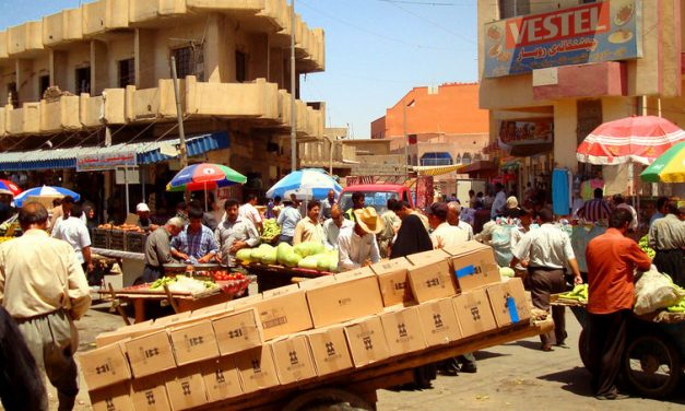 Increase Access for the Handicapable in Iraq